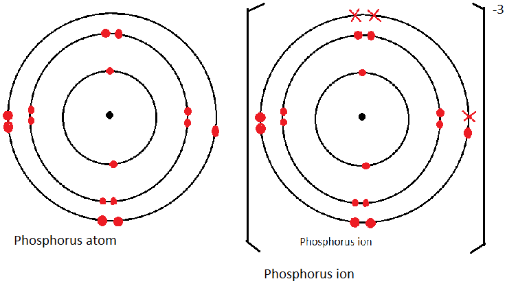 Structure Of The Atom And The Periodic Table
