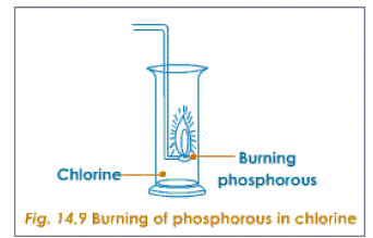 burning of phosphorus in chlorine