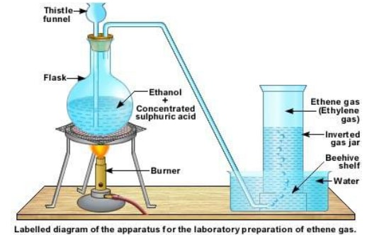 dehydration of alcoh XueAZ