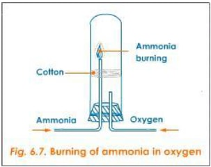 burning of ammonia i KOgsm