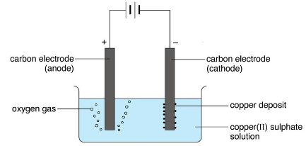 electrolysis of copper II sulphate using carbon electrodes
