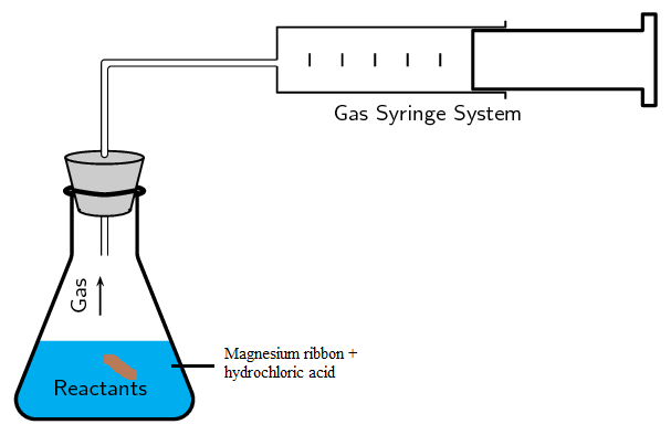 hcl and magnesium reactions setup