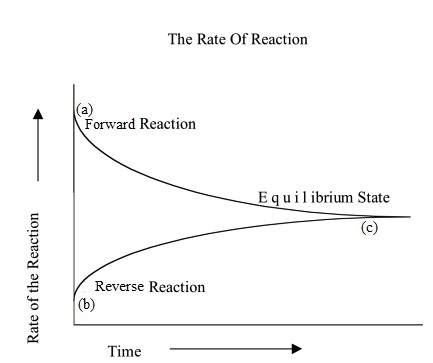 reversible reaction curves