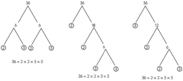 simple factorization tree maths form 1 notes