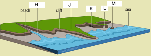 coastline landform features