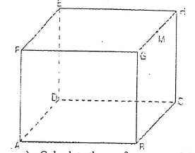 cuboid area
